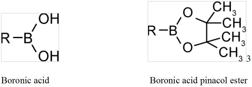 boronic acids_boronic acid pinacol ester _Interchim_blog_0616