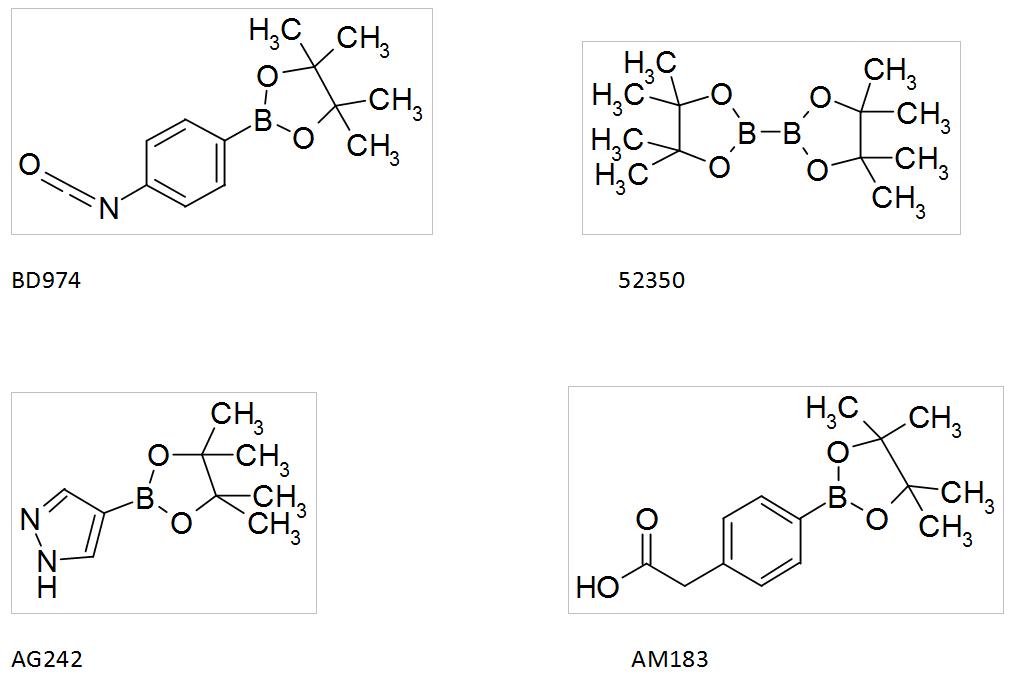 boronic acids_choices catalog SYNHTESIS INTERMEDIATES_Interchim_blog_0616