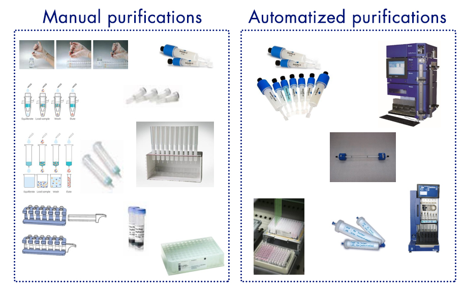 purification-proteine-manual-automatized-interchim-blog-1016