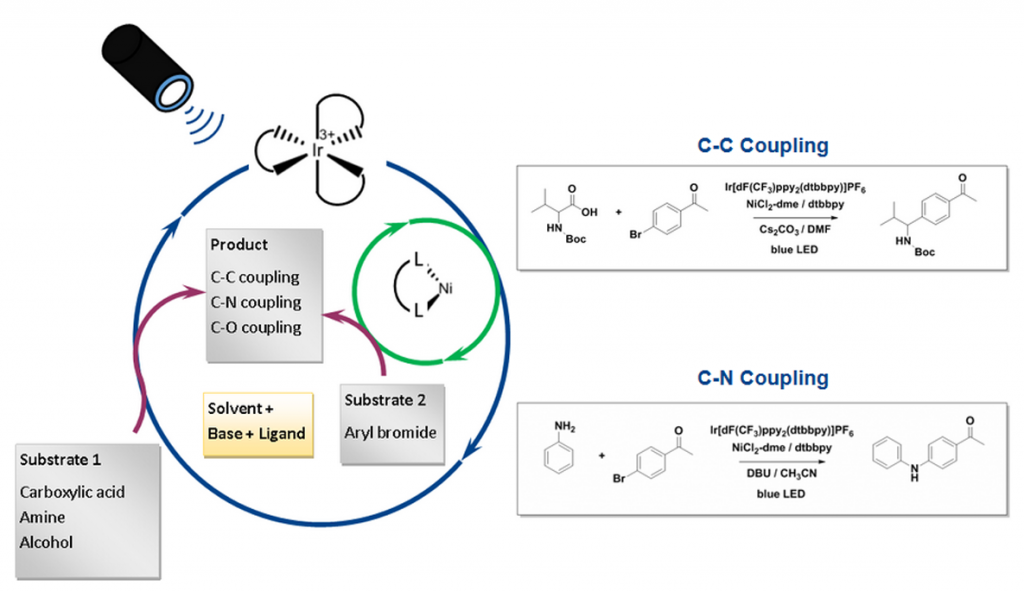 HepatoChem_photochemistry_c-c_coupling_interchim_blog0717