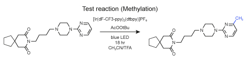 Test rection (Methylation)