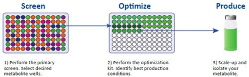 Biomimetic Oxidation Kits