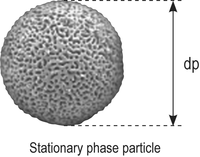 Stationary phase particle