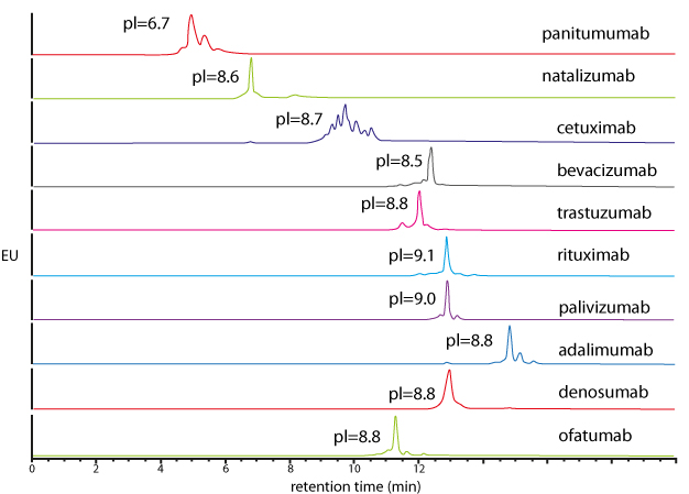 Generic pH-gradient method for the caracterisation of 10 intact mAbs