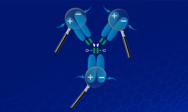 Analysis & purification of proteins:all about Ion Exchange Chromatography (IEX)
