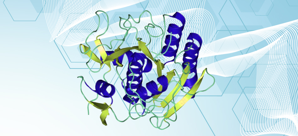 Reliable Proteinase K for molecular biology works