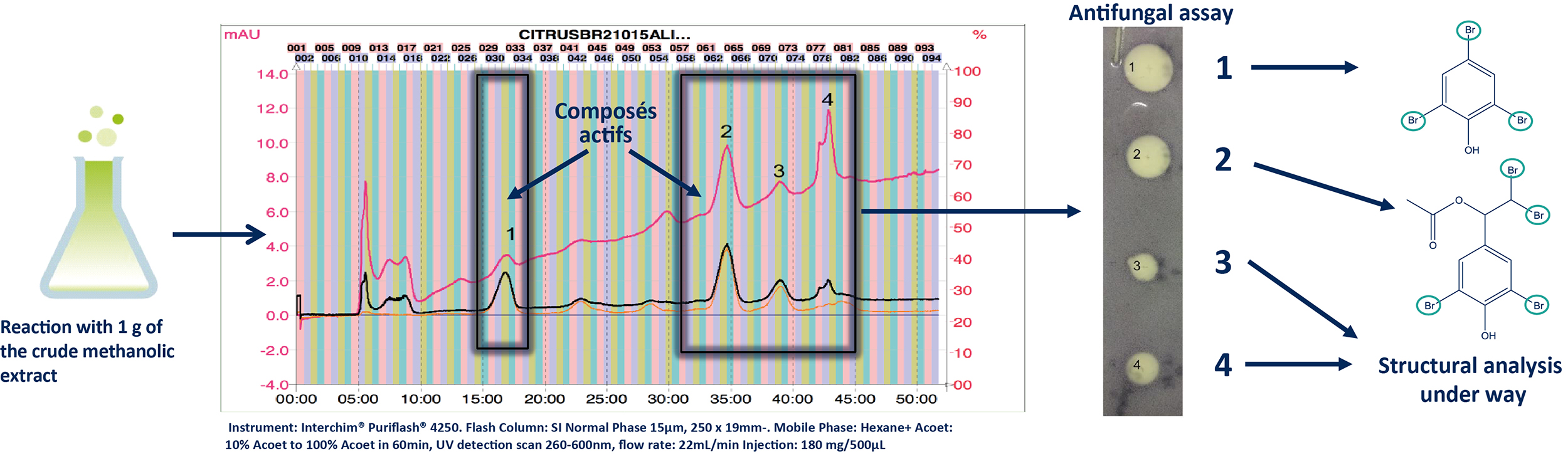 Normal Phase Ultra Pressure Flash Chromatography (FC-UV)